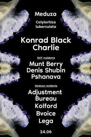 DOT meduza-konrad-black