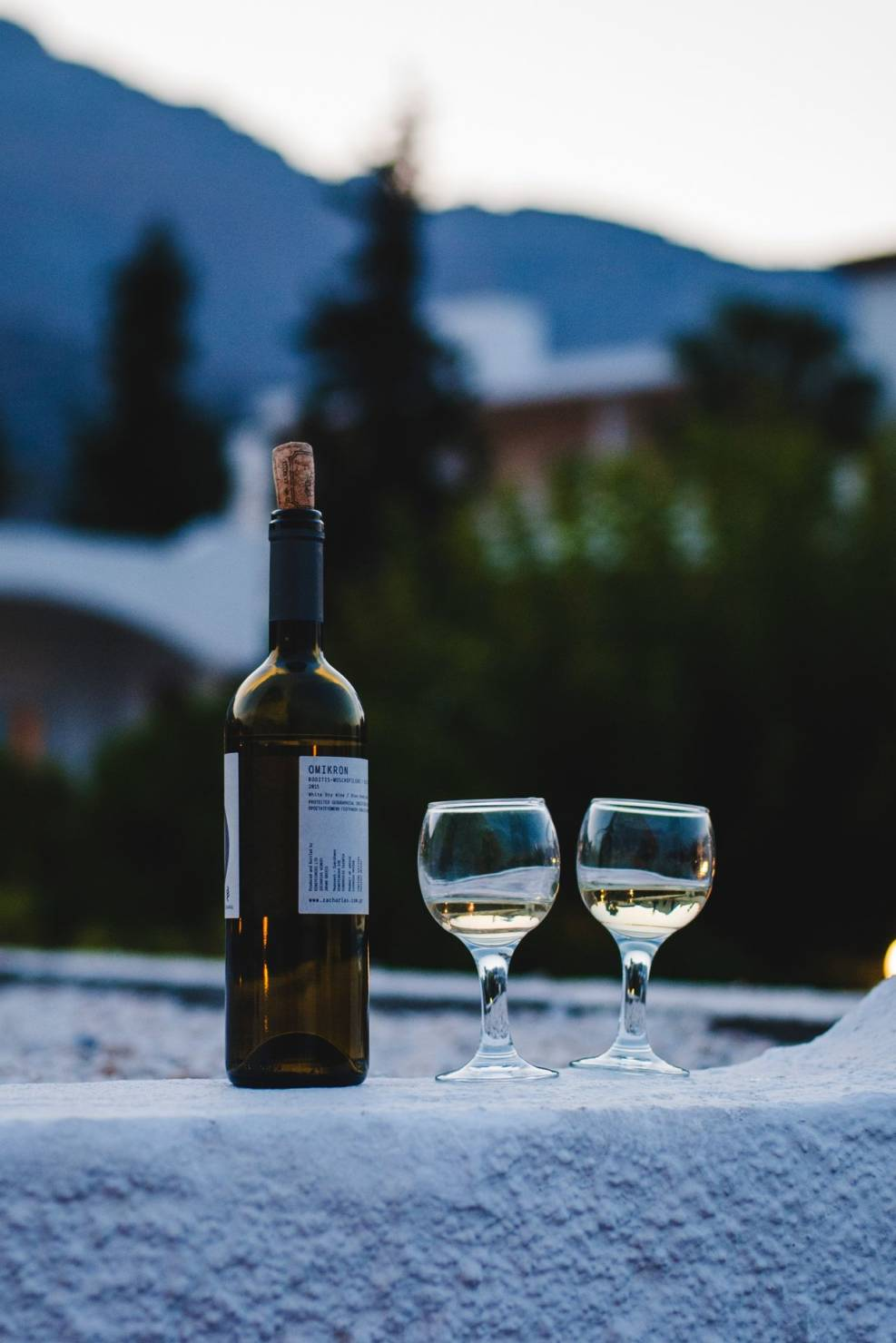 simplewine, винотека, открытие, винная этикетка, искусство и этикетка, виктория мустяца, винный эксперт, греческое вино, вино греции