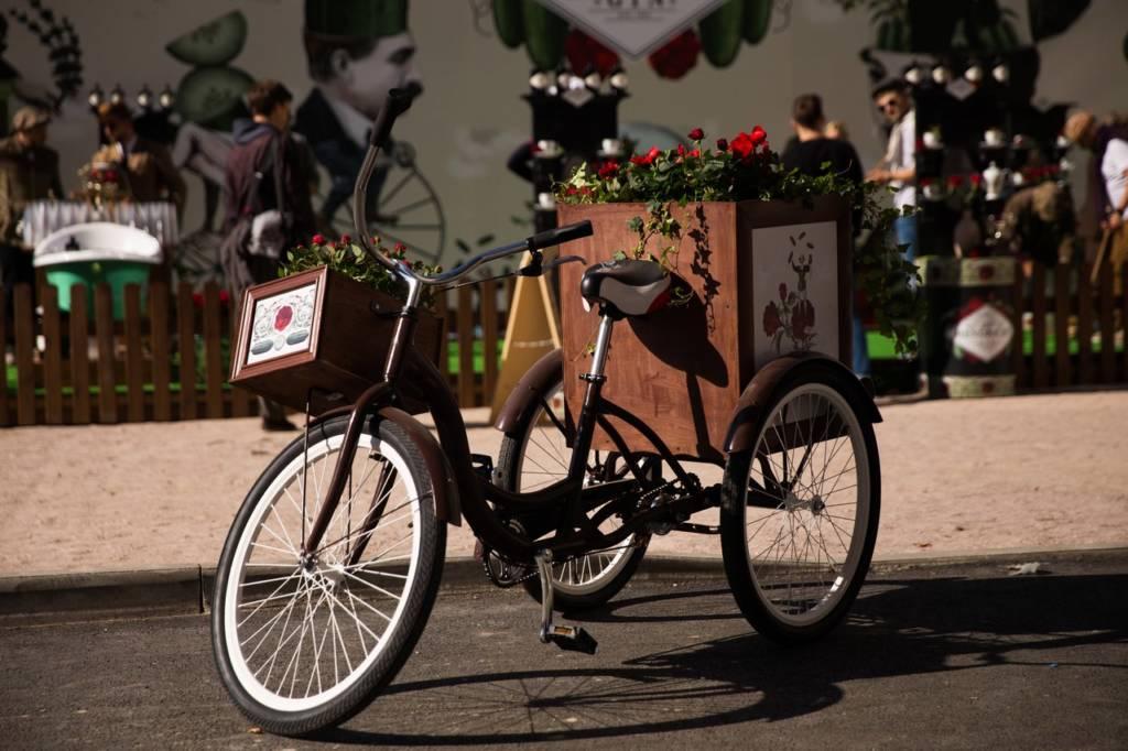 bicycle, flowers, alco-art