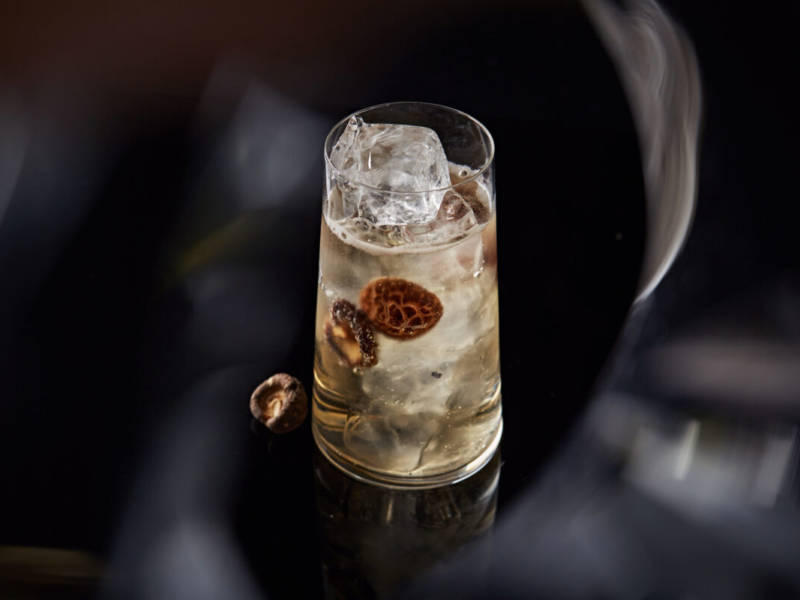 Mercedes Bar, московский бар, коктейли, коктейль, коктейльная карта, dcw magazine, журнал о барах, журнал о коктейлях, русский бар, бар в Москве, куда пойти в москве, мерседес бар москва, джин тоник, коктейль, красивый коктейль