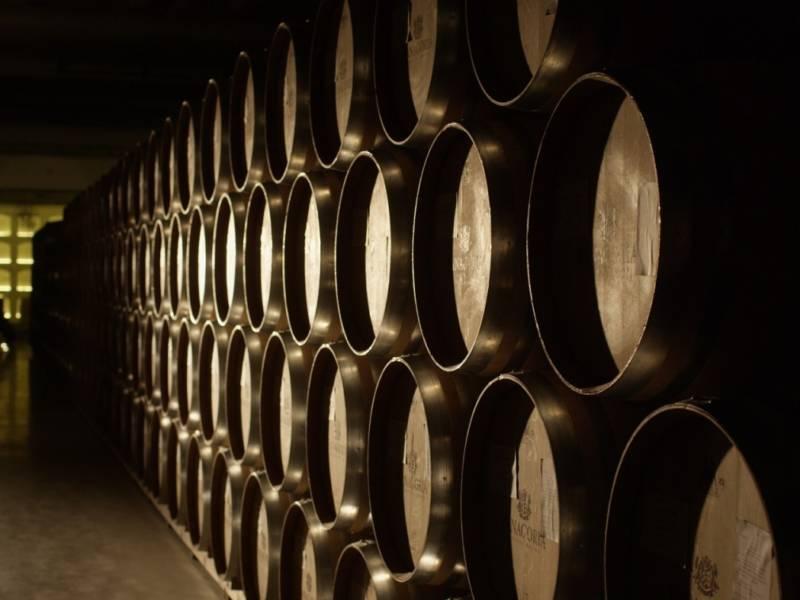 фанагория, фестиваль российских вин, российское вино, вино, винные бочки, первая проба, dcw magazine, журнал о барах