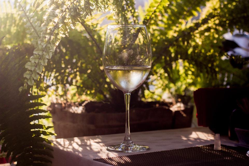 винный туризм, русское виноделие, русское вино, бокал вина, DCW Magazine, журнал о вине, журнал о барах, журнал об алкоголе